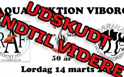 Aqua Auktion Viborg udskydes indtil videre