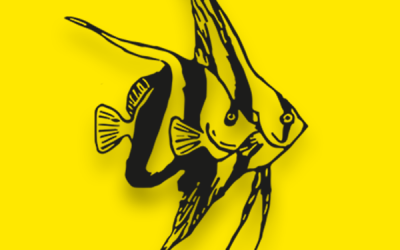 Program for udstillere til Viborg Akvariemesse