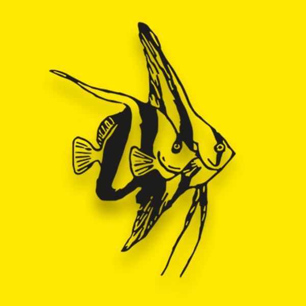 Regler for udstillere til Viborg Akvariemesse